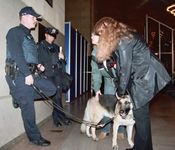 Police With Dog in Grand Central