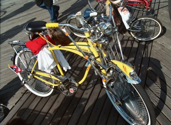 Tricked Out Bikes - Yellow Bike