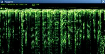 Digital Voiceprint