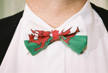 Welsh Dragon Bowtie