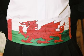 Welsh Dragon Cummerbund