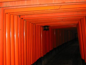 Tom Plant's photo of a torii tunnel