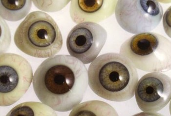 Prosthetic Eyes for Taxidermy